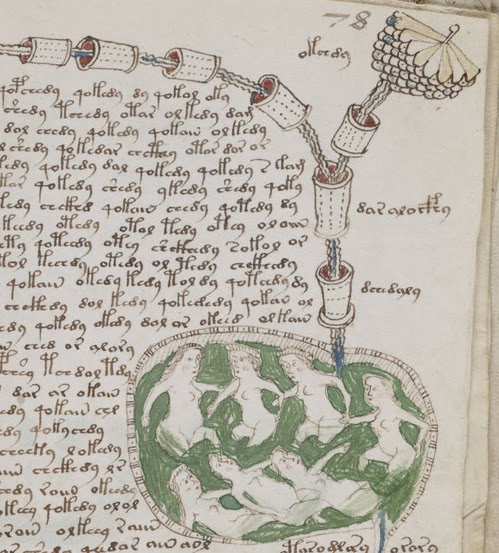 Voynich_manuscript_bathtub2_example_78r_cropped-thumb-500×553-6315.jpg