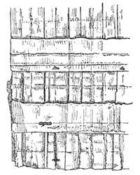 Gruel - La Reliure et la dorure des livres p 023.jpg